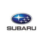 Logo_Ref-Customer_Automotive-01